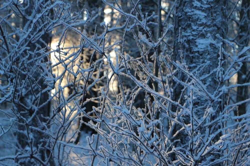 valo-lumen-takana
