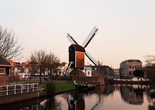 Leiden tuulimylly