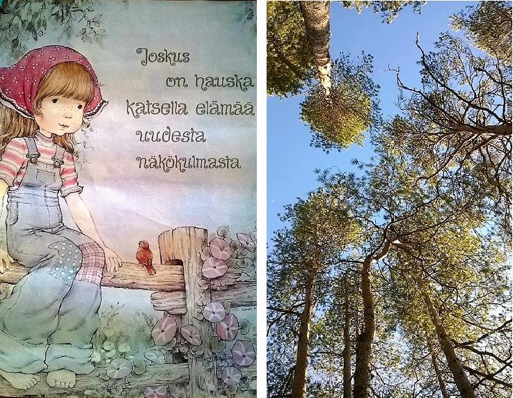 Susanna ja metsä