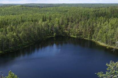 2017-07-26 Repoveden kansallispuisto